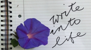 Write into life! Short video courses on writing for health and happiness.